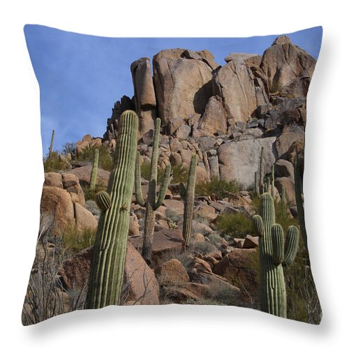 Pinnacle Peak Throw Pillow featuring the photograph Pinnacle Peak Landscape by James BO Insogna