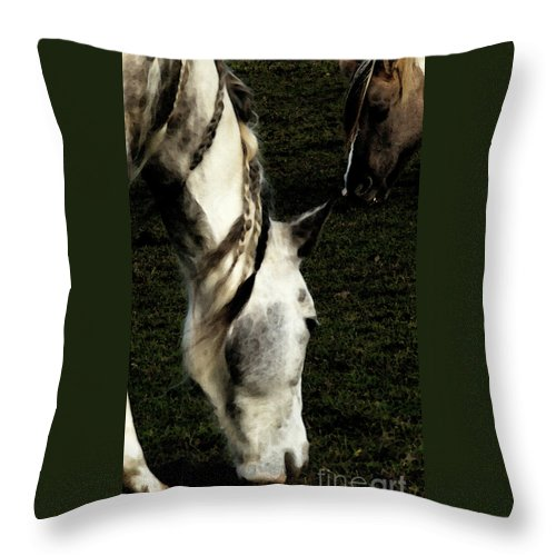 Horse Throw Pillow featuring the photograph Piomingo by Linda Shafer