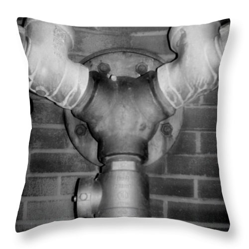 Color Photograph Throw Pillow featuring the photograph Pipe by Thomas Valentine
