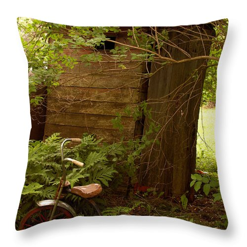 Outhouses Throw Pillow featuring the photograph Pit Stop by Linda McRae