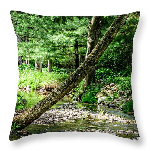 Tree Throw Pillow featuring the photograph Place Of Peace by Joshua Zaring