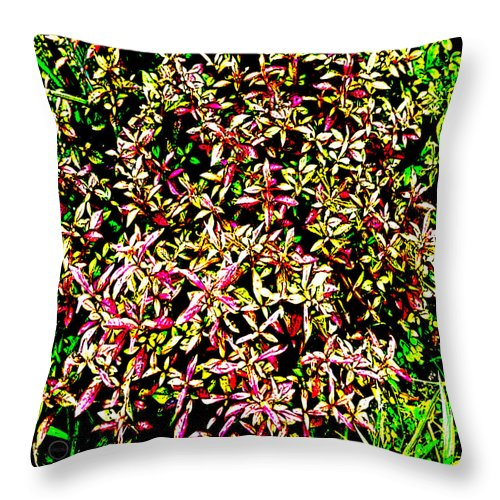 Square Throw Pillow featuring the digital art Plant Power 4 by Eikoni Images