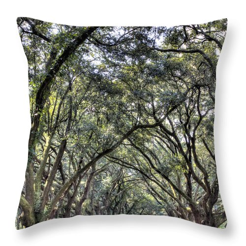 Plantation Drive Throw Pillow featuring the photograph Plantation Drive by Dustin K Ryan