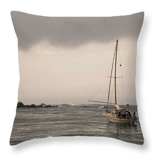 Ocean Throw Pillow featuring the photograph Play Misty For Me by Donna Blackhall