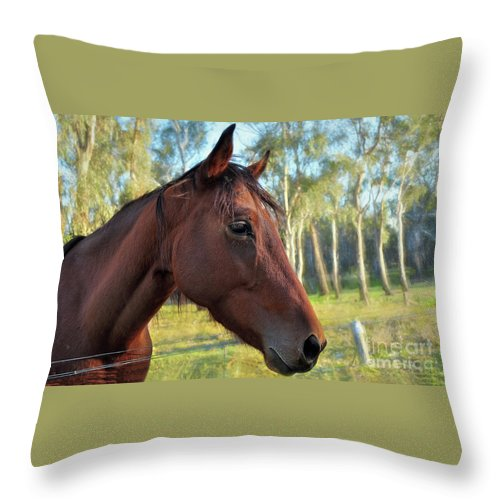Photography Throw Pillow featuring the photograph Please Talk To Me... by Kaye Menner