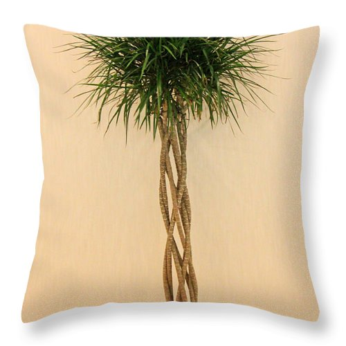 Palm Tree Throw Pillow featuring the photograph Plug Me In by Robert W Dunlap