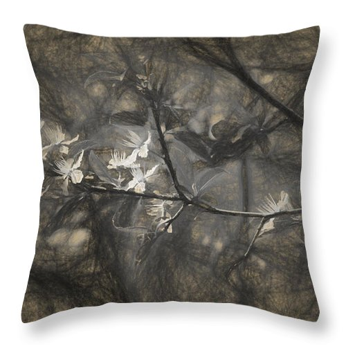 Apple Throw Pillow featuring the photograph Plum blossom impression by Adrian Bud