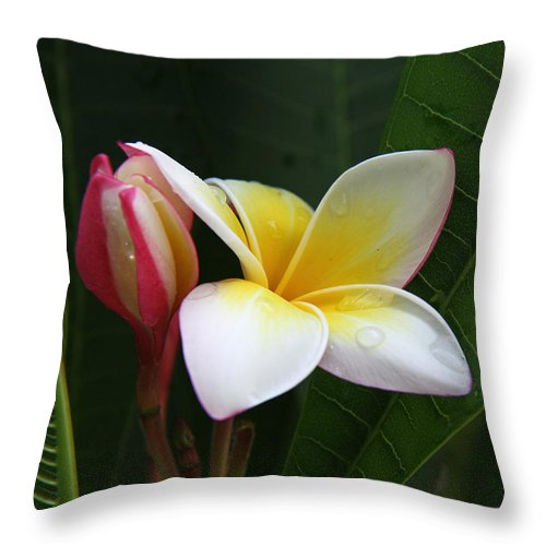 Plumeria Throw Pillow featuring the photograph Plumeria Bloom by Gary Hughes