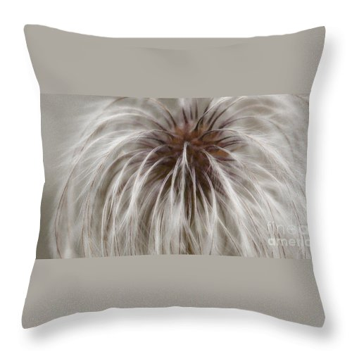 Plume Throw Pillow featuring the photograph Plumosa by Linda Shafer