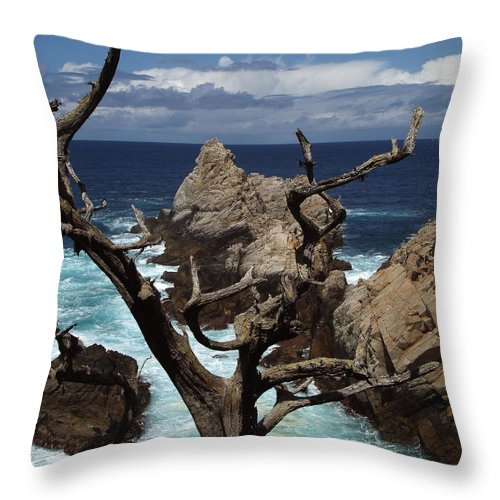 Carmel Throw Pillow featuring the photograph Point Lobos Rocks And Branches by Charlene Mitchell