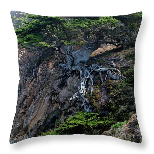 Landscape Throw Pillow featuring the photograph Point Lobos Veteran Cypress Tree by Charlene Mitchell