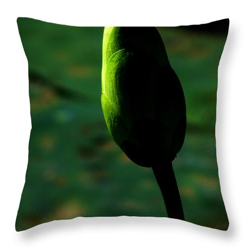 Lotus Throw Pillow featuring the photograph Poised for greatness by Amanda Barcon