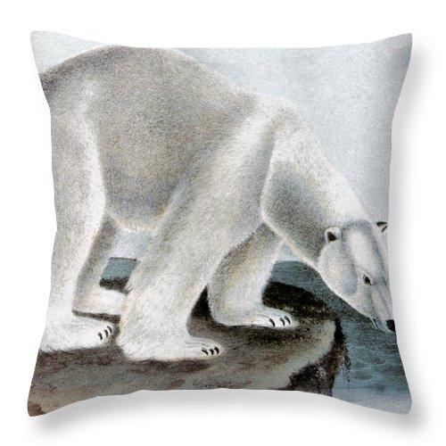 1846 Throw Pillow featuring the photograph Polar Bear (ursus Maritimus) by Granger