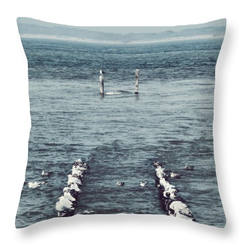Seagulls Throw Pillow featuring the photograph Pole Position by Wim Lanclus