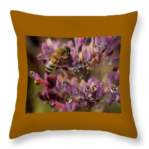 Bee. Cutter Throw Pillow featuring the digital art Pollen Bees by Roger Medbery