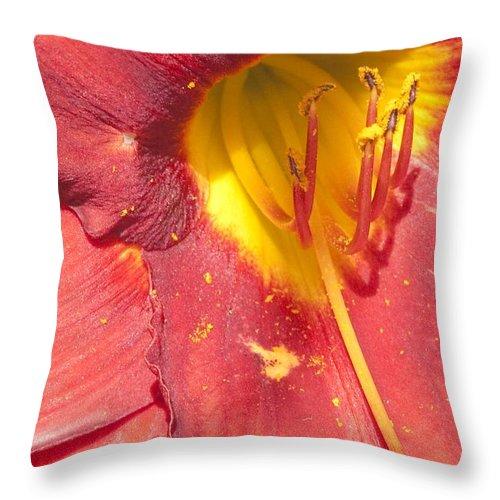 Pollen Throw Pillow featuring the photograph Pollen by Steven Natanson