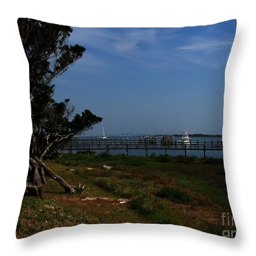 Art For The Wall...patzer Photography Throw Pillow featuring the photograph Ponce De Leon by Greg Patzer