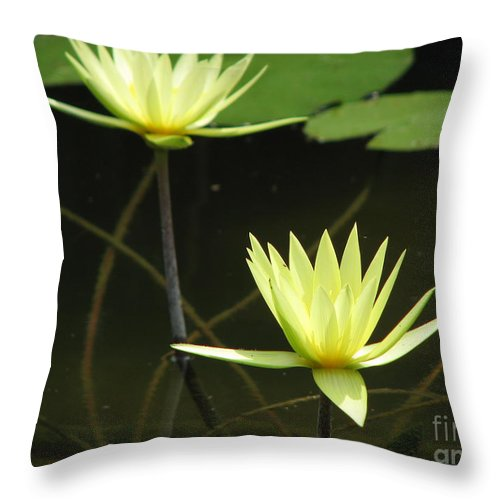 Pond Throw Pillow featuring the photograph Pond by Amanda Barcon