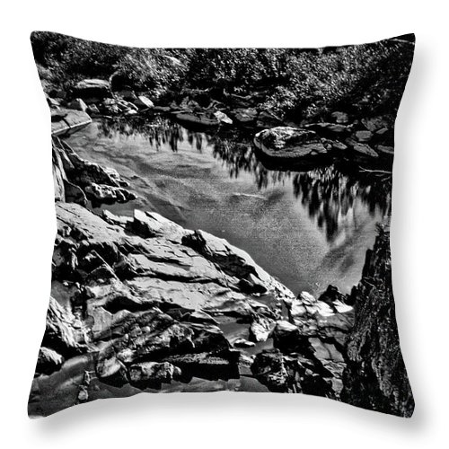 Great Falls Throw Pillow featuring the photograph Pond At Great Falls #4 by Stuart Litoff