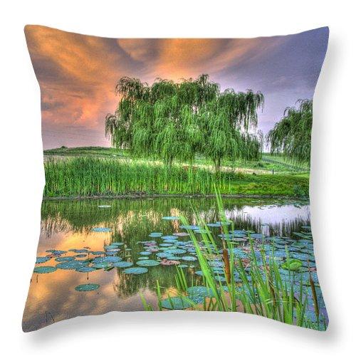 Pond Throw Pillow featuring the photograph Pond Dreams 4 by Sam Davis Johnson