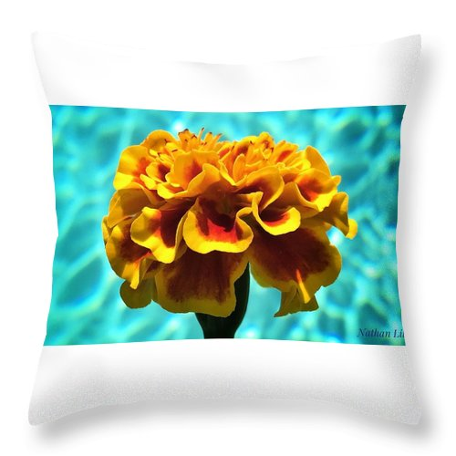 Photography Throw Pillow featuring the photograph Pool Side Beauty by Nathan Little
