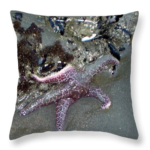 Starfish Throw Pillow featuring the photograph Poor little starfish by Elizabeth Klecker