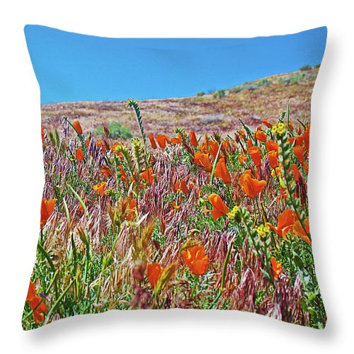 Poppies And Fiddleneck In Windy Antelope Valley California Poppy Reserve Throw Pillow featuring the photograph Poppies And Fiddleneck In Antelope Valley Ca Poppy Reserve by Ruth Hager
