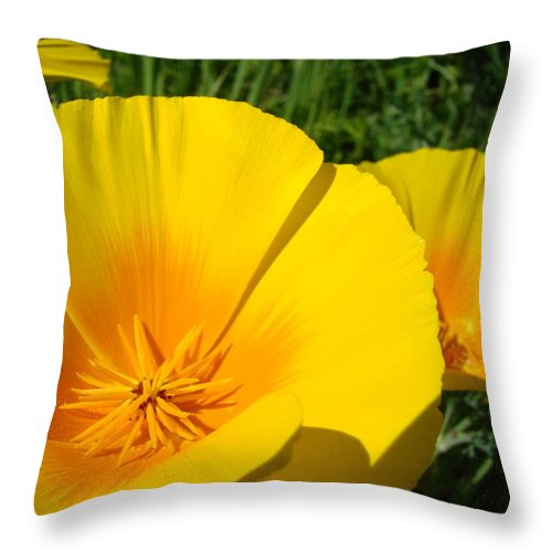 �poppies Artwork� Throw Pillow featuring the photograph Poppies Art Poppy Flowers 4 Golden Orange California Poppies by Baslee Troutman