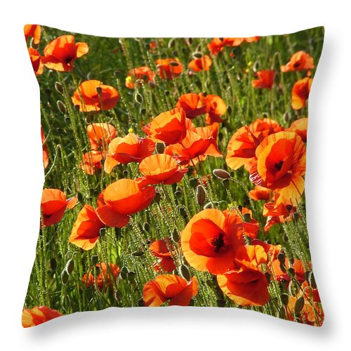 Poppies Throw Pillow featuring the photograph Poppies by Bob Kemp