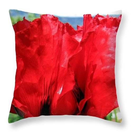 Poppies Throw Pillow featuring the photograph Poppies Plus by Will Borden
