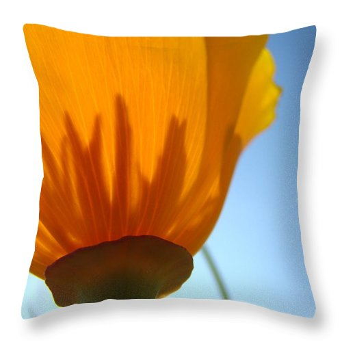 �poppies Artwork� Throw Pillow featuring the photograph Poppies Sunlit Poppy Flower 1 Wildflower Art Prints by Baslee Troutman
