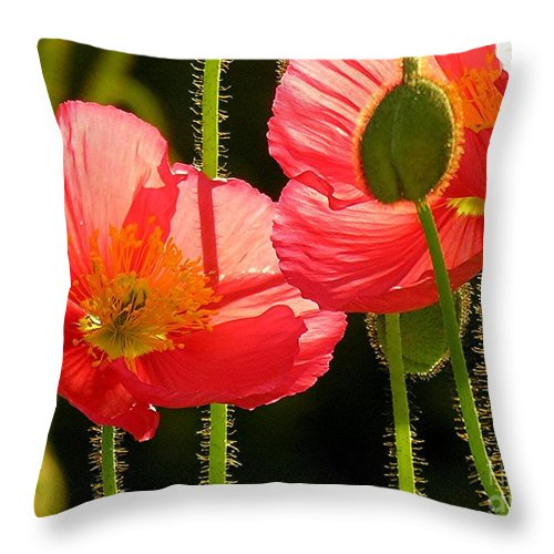 Poppy Throw Pillow featuring the photograph Poppy by Diane Greco-Lesser