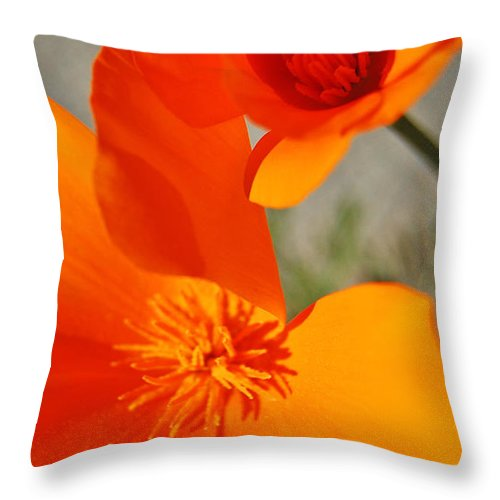 Poppy Throw Pillow featuring the photograph Poppy Duet by Jean Booth