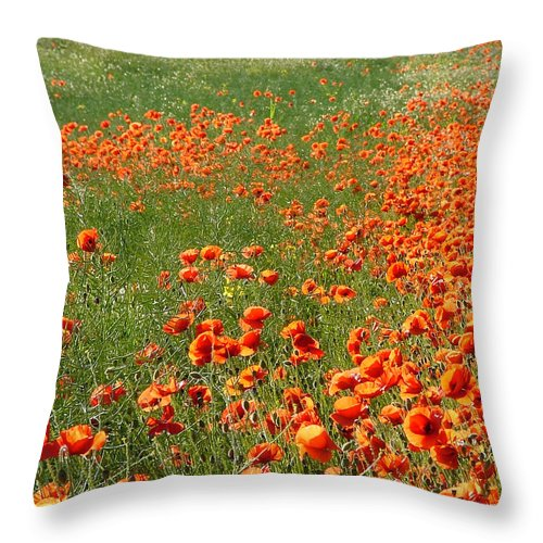 Poppy Throw Pillow featuring the photograph Poppy Field by Bob Kemp