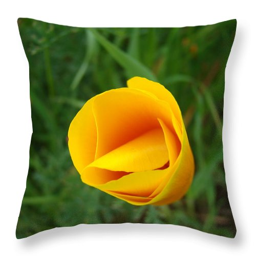 �poppies Artwork� Throw Pillow featuring the photograph Poppy Flower Bud 9 Orange Poppies Green Meadow Art Prints Baslee Troutman by Baslee Troutman