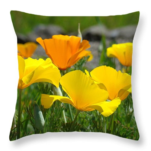 �poppies Artwork� Throw Pillow featuring the photograph Poppy Flower Meadow 14 Poppies Orange Flowers Giclee Art Prints Baslee Troutman by Baslee Troutman