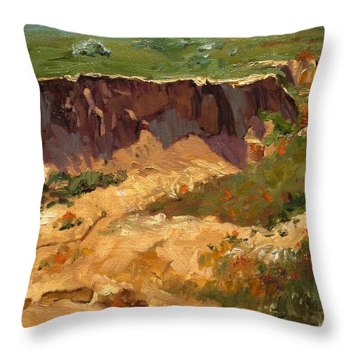 Landscape Throw Pillow featuring the painting Poppy Gorge by Barbara Andolsek