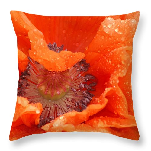 Orange Throw Pillow featuring the photograph Poppy by Heather Coen