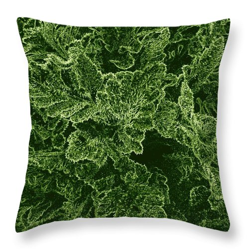 #poppyleaves Throw Pillow featuring the digital art Poppy Leaves by Will Borden