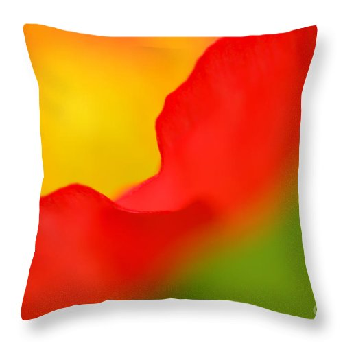 Poppy Throw Pillow featuring the photograph Poppy by Silke Magino