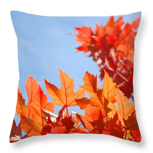 Autumn Throw Pillow featuring the photograph Popular Autumn Art Red Orange Fall Tree Nature Baslee Troutman by Baslee Troutman