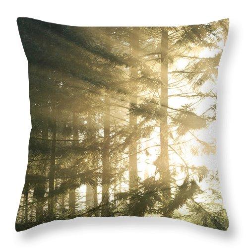 Sun Throw Pillow featuring the photograph Portal by Daniel Csoka