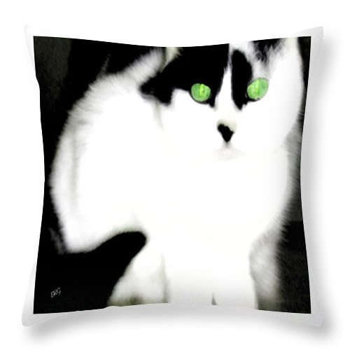 Cat Throw Pillow featuring the photograph Portrait Of A White Cat by Ben and Raisa Gertsberg