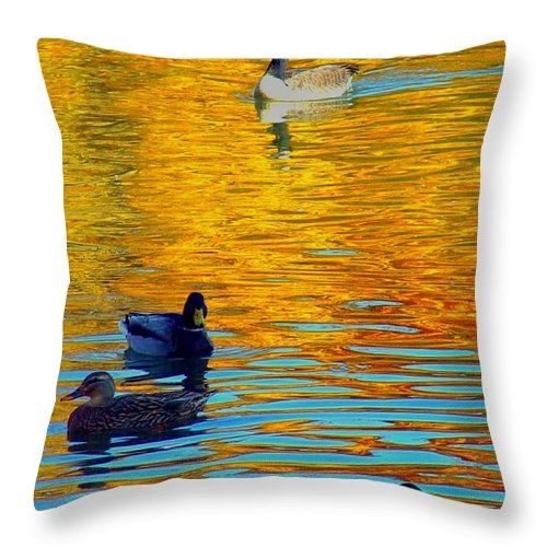 Ducks Malard Lake Gold Canada Geese Blue Throw Pillow featuring the photograph Possibilities by Jack Diamond