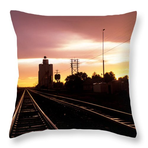 Potter Throw Pillow featuring the photograph Potter Tracks by Jerry McElroy