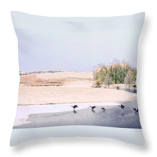 Landscape Throw Pillow featuring the photograph Powell Gardens in Winter by Steve Karol