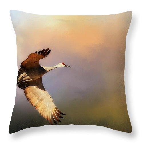 Nature Throw Pillow featuring the photograph Power Stroke, Sandhill Crane, Bosque del Apache, New Mexico by Zayne Diamond Photographic