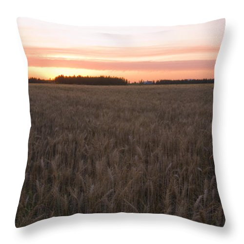 Fields Throw Pillow featuring the photograph Prairie Pink by Idaho Scenic Images Linda Lantzy