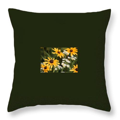 Daisy Throw Pillow featuring the photograph Prairie Sceen by Mark Braun