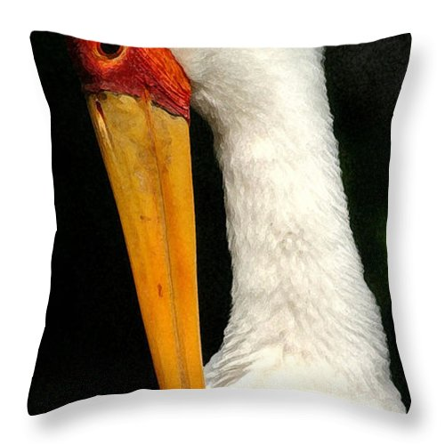 Stork Throw Pillow featuring the photograph Preening Stork by Mary Haber